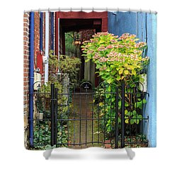 Downtown Garden Path Shower Curtain