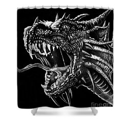 Dragon Shower Curtain by Bill Richards