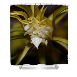 Shower Curtain featuring the photograph Dragon Flower by David Millenheft