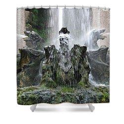 Dragon Fountain Shower Curtain