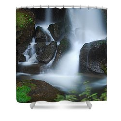 Dragon Head Falls Shower Curtain by Jonah  Anderson