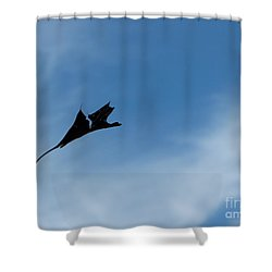 Shower Curtain featuring the photograph Dragon In Flight by Jane Ford