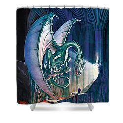 Dragon Lair With Stairs Shower Curtain