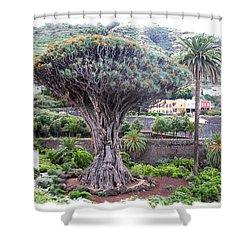 Dragon Tree Shower Curtain by Ha Ko