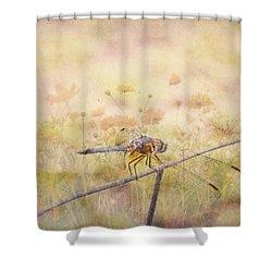 Dragonfly Dreams Shower Curtain by Judy Hall-Folde