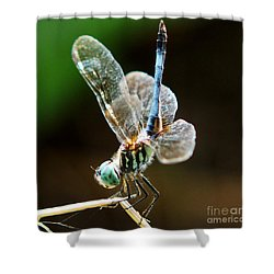 Dragonfly Headstand Shower Curtain