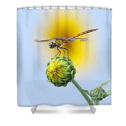 Dragonfly In Sunflowers Shower Curtain