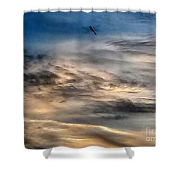 Dragonfly In The Sky Shower Curtain