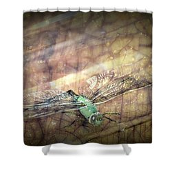 Dragonfly Leap Of Faith Shower Curtain by Dawna Morton