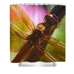 Dragonfly Patterns Shower Curtain