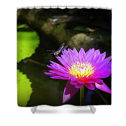 Shower Curtain featuring the photograph Dragonfly Resting by Laurie Perry