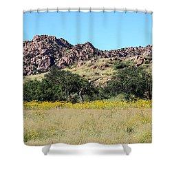 Dragoon Mountains Shower Curtain by Joe Kozlowski