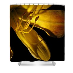Dramatic Lily Shower Curtain