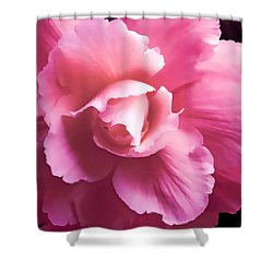 Dramatic Pink Begonia Floral Shower Curtain by Jennie Marie Schell