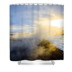 Shower Curtain featuring the photograph Drawn To The Sun by Peta Thames