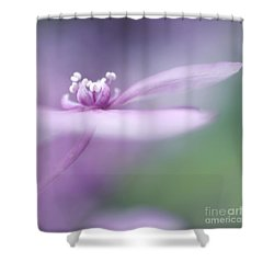 Dream A Little Dream Shower Curtain by Priska Wettstein
