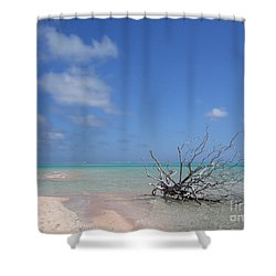 Dream Atoll  Shower Curtain