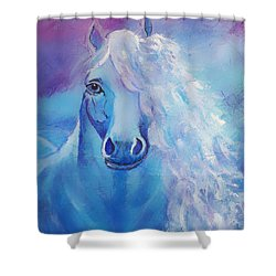 Dream Catcher Shower Curtain by The Art With A Heart By Charlotte Phillips