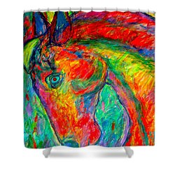 Dream Horse Shower Curtain