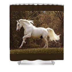 Dream Horse Shower Curtain