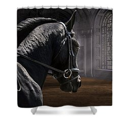 Dream Lofty Dreams Shower Curtain by Fran J Scott