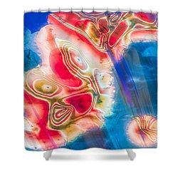 Dream Nebulae Shower Curtain