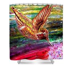 Dream Of A Hummingbird  Shower Curtain