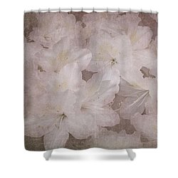 Shower Curtain featuring the photograph Dream Of Home by Arlene Carmel