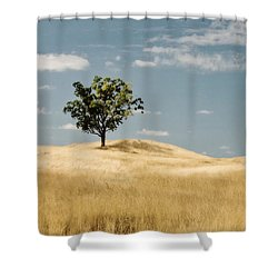 Dream Tree Shower Curtain by Scott Pellegrin