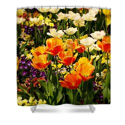Dreaming In Color Shower Curtain by Rodney Lee Williams