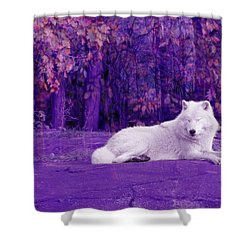 Dreaming Of Another World Shower Curtain by Vicki Spindler