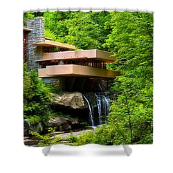 Dreaming Of Fallingwater 4 Shower Curtain