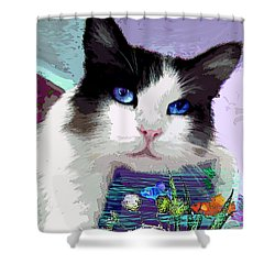 Dreaming Of Fish Shower Curtain by Michele Avanti