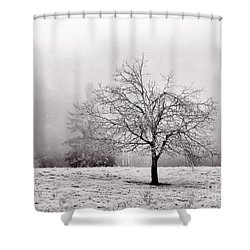 Dreaming Of Life To Come Shower Curtain