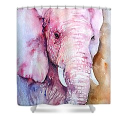 Dreams_elephant In Pink Shower Curtain