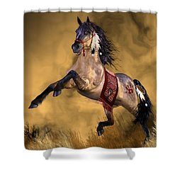 Dreamweaver Shower Curtain by Valerie Anne Kelly