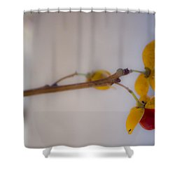 Dreamy Bittersweet Shower Curtain by Teresa Mucha