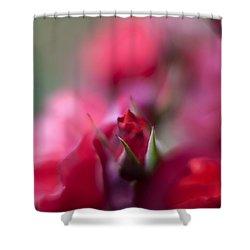 Dreamy Nest Shower Curtain by Mike Reid