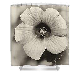 Dreamy Sepiatone Rosette Hibiscus Shower Curtain by Sabrina L Ryan