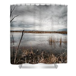 Dreary Shower Curtain by Cat Connor