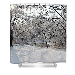 Shower Curtain featuring the photograph Dressed In Snow by Nina Silver