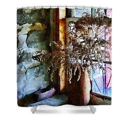 Dried Flowers On Windowsill Shower Curtain by Susan Savad
