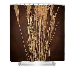 Dried Winter Grasses Shower Curtain by Steve Gadomski