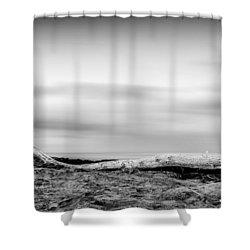 Drift-wood Shower Curtain