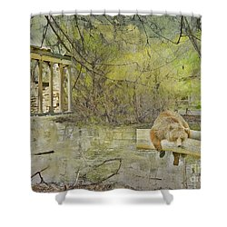Shower Curtain featuring the photograph Drifter by Liane Wright