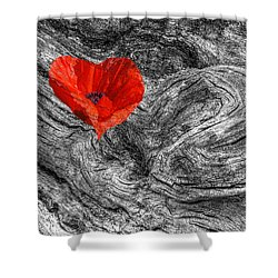 Drifting - Love Merging Shower Curtain by Gill Billington