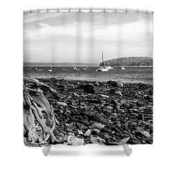 Driftwood And Harbor Shower Curtain