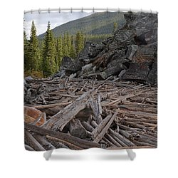 Driftwood And Rock Shower Curtain