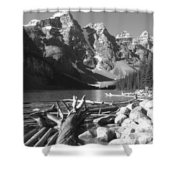 Driftwood - Black And White Shower Curtain