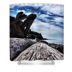 Driftwood In Teddy Bear Cover Shower Curtain